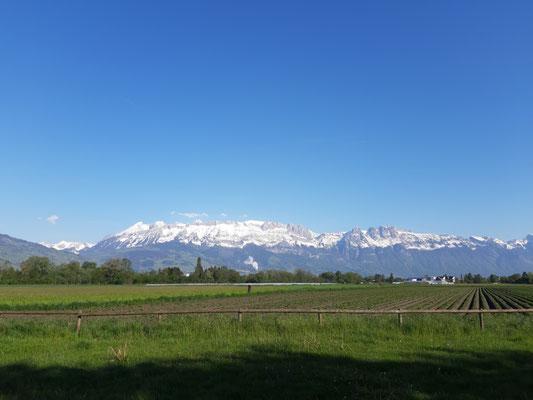 Schweiz von JH aus
