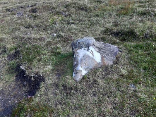 Unterwegs mit Schaf auf Stein