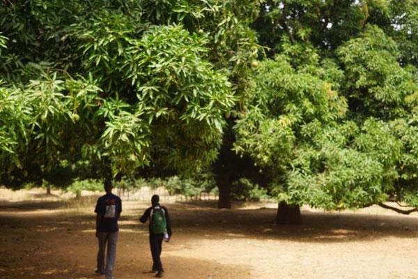 Wanderung durch die Gärten und Felder von Siby