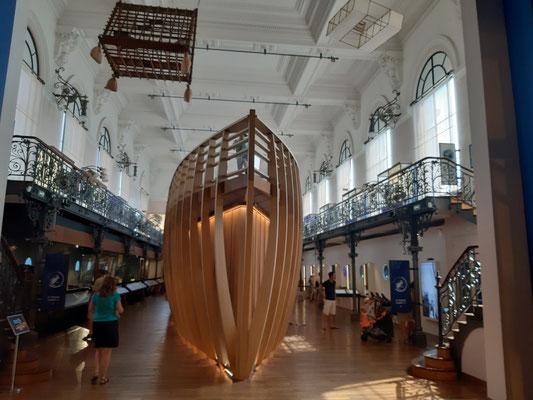 Im Ozeanographischen Museum