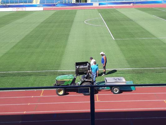Die Greenkeeper im Nationalstadion