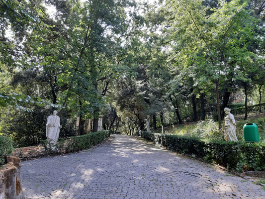 In den Gärten des Vatikans