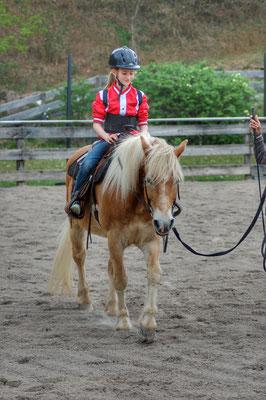 Erste Reitversuche mit dem Haflinger Alex, eines der Schulpferde der Reitschule Priska Kelderer.