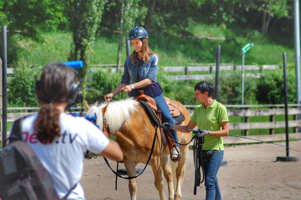 Peer.tv Filmaufnahmen Haflinger Pferd Priska Kelderer Reitschüler