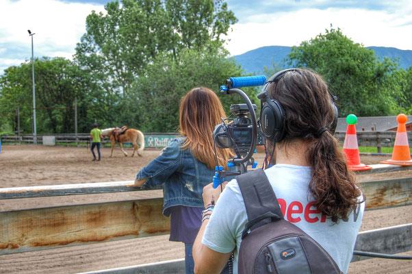 Peer.tv Filmaufnahmen Reitplatz mit Haflinger