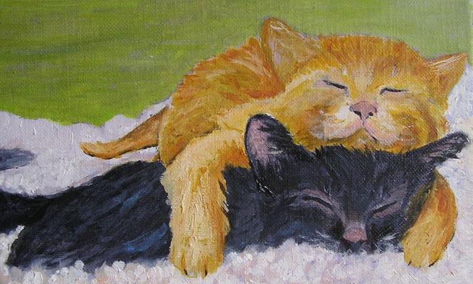 Sieste de chats - 22x14