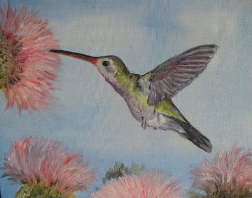 Le colibri 20 x 20 6 - N'est plus disponible