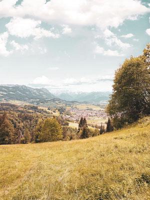 Burgberg Allgäu Alpen Wiese Kühe Wandern