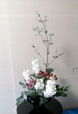 水谷雅由 ユーカリ ストック アストロメリア