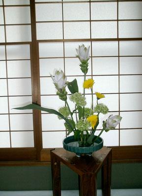 9   雅雪 クルクマ ガーベラ 紫陽花