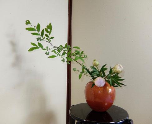 河本珠実 芍薬 プルーベリー
