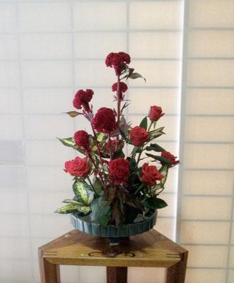 河本珠実 鶏頭 バラ(レットスター) ドラセナ(ジャバダ)