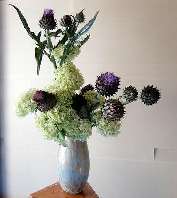 塩谷珠里 朝鮮アザミ 紫陽花