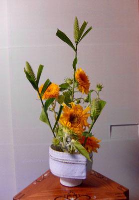 松尾雅雪  泡 東北八重向日葵