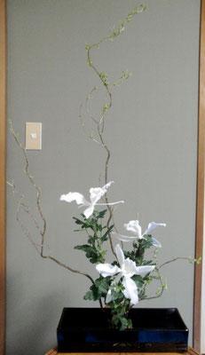 川上雅櫻 雲竜桺 カトレア 小菊