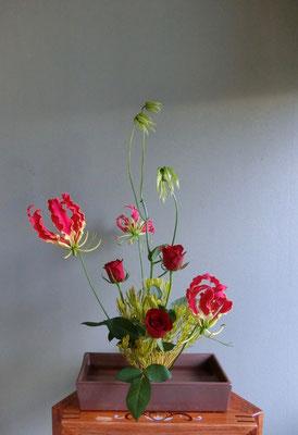 川上雅櫻 グラリオサ 薔薇 リューカデンドロ
