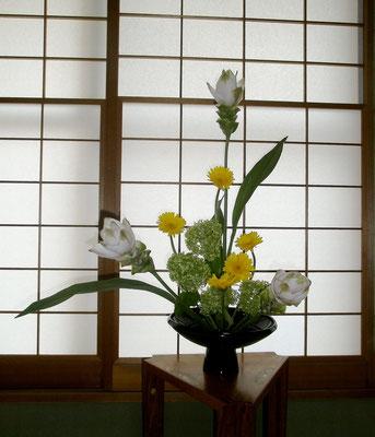 7   雅櫻 クルクマ ガーベラ 紫陽花