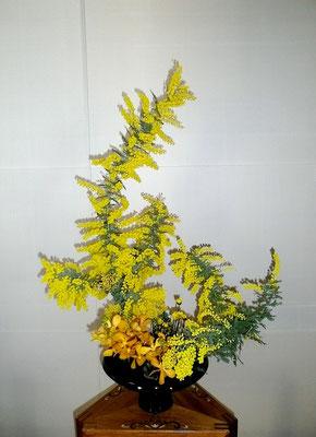 河本珠実 アカシヤ、モカラ、小菊