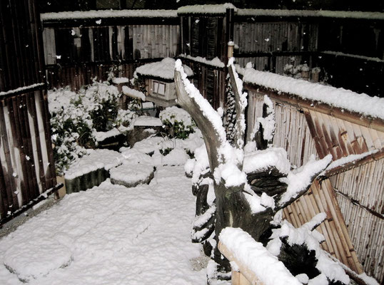茶道雅流空中庭園雪化粧
