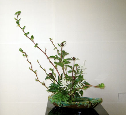 木いちご 芍薬
