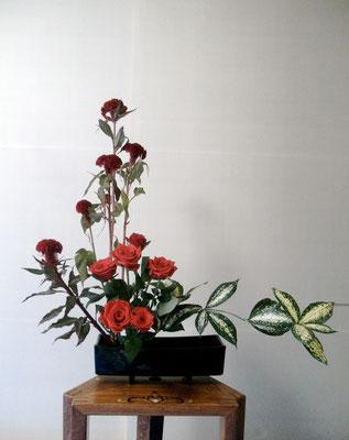 松尾雅雪 鶏頭 バラ(レットスター) ドラセナ(ジャバダ)