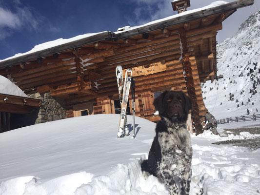 Dimas, der Schifahrer