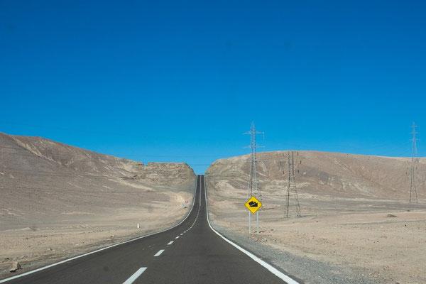 von Calama nach Iquique