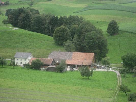 Wermelinger Felix, Neuhus