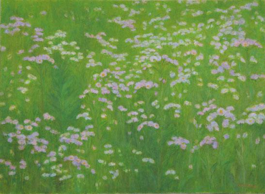あいしまたかこ (油彩)P20号 『野辺の花園』