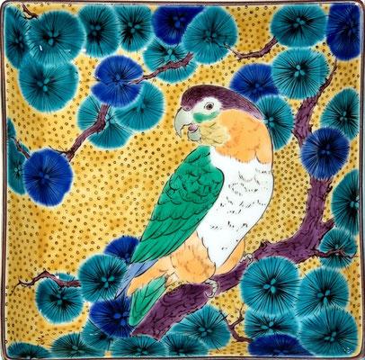 中島芳奈子 18×18×深さ3cm 『九谷焼角皿 ズグロシロハラインコと松』