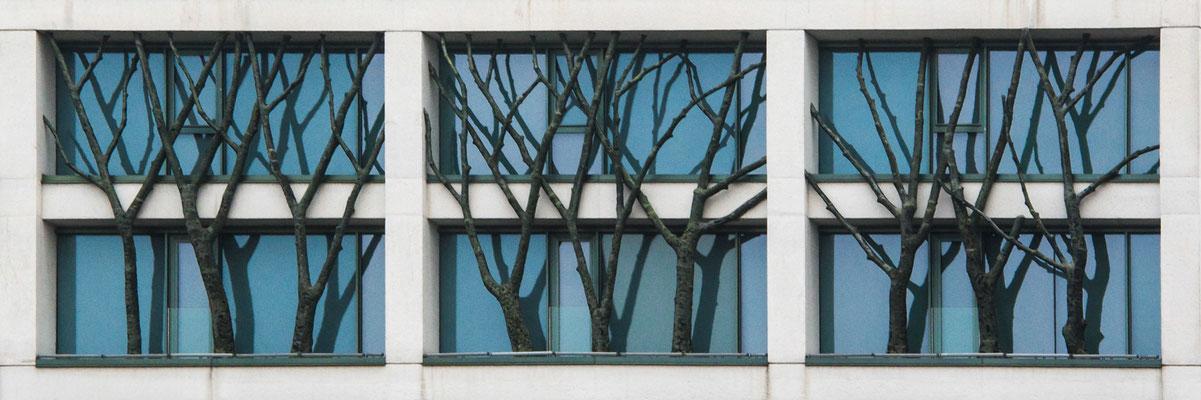 Baumhaus, Lobende Erwähnung fotoforum Award 1/2014, Freies Thema