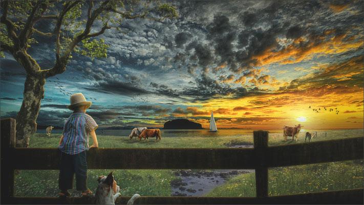 unsere kleine Farm ...