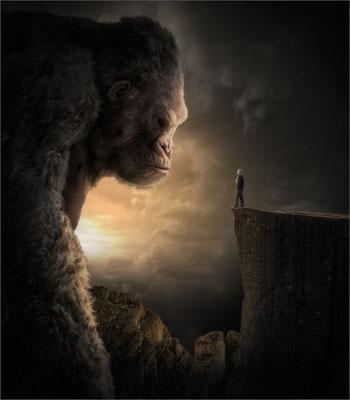 im Reich des Kong ...