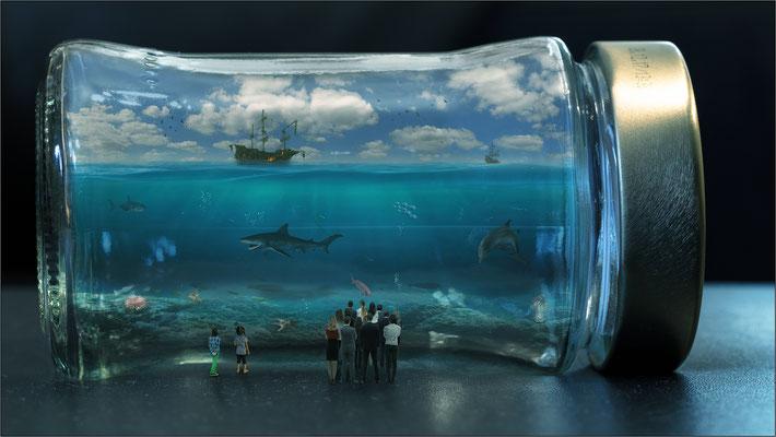 das Glas-Aquarium...