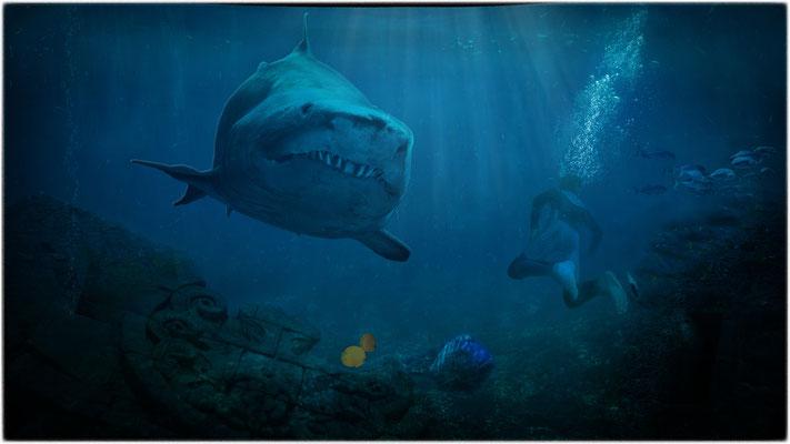 der Hai ...