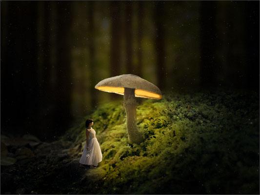 der glühende Pilz ...