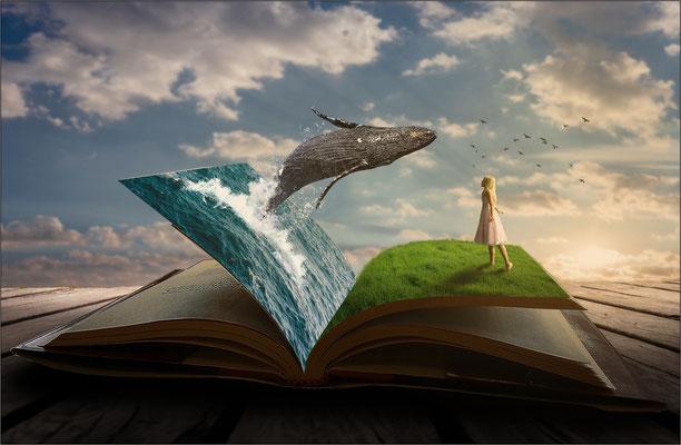 das Fantasie-Buch ...