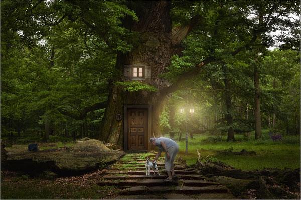 mein Baumhaus ....