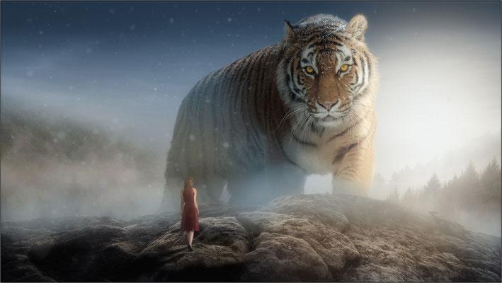 der große Tiger ...