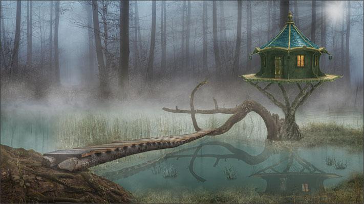 im Sumpf ...