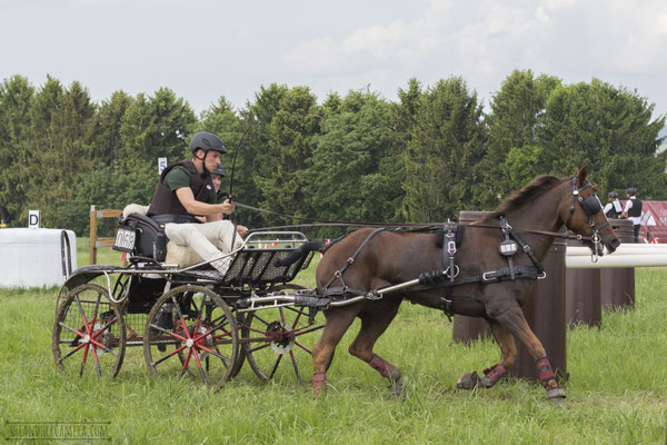 Carriage Driving Competition, Keispelt
