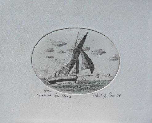 """Corbeau des mers """