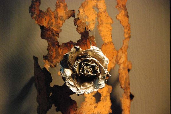 Rosa d`argento
