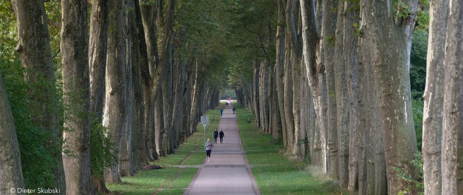 Unterer Schlossgarten