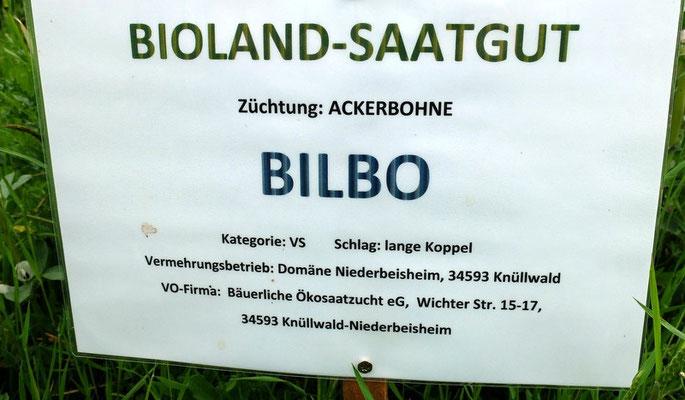 Biolandsaatgut der heimischen Ackerbohne BILBO