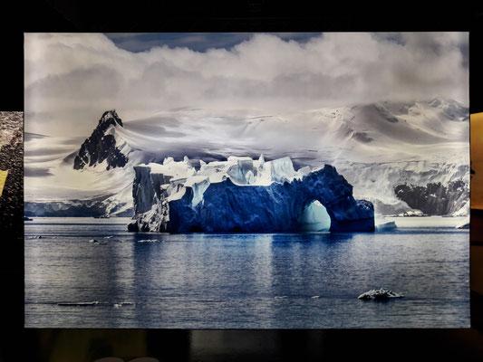 Antarktis 2019 Foto: Steve McCurry