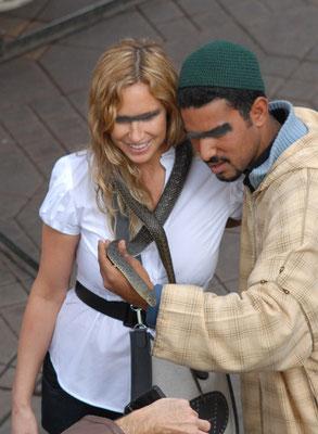 Couleuvre de Montpellier, mâlede la sous-espèce «saharatlanticus», Place Jemaa-El-Fna  à Marrakech ©Michel AYMERICH