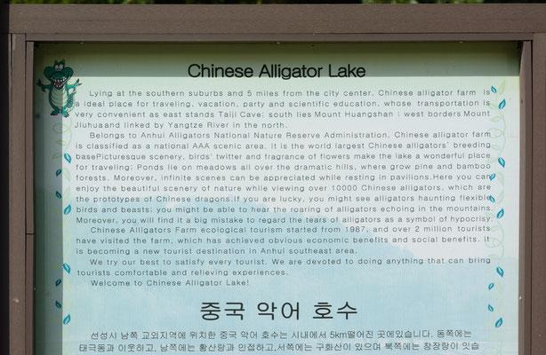 Ferme à alligators de Chine. Province de ANHUI ©Michel AYMERICH
