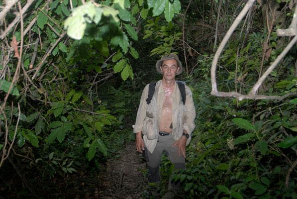 Dans un sous-bois humide et chaud des environs de Kérouané...
