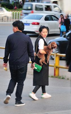 Une femme et son chien. Kunming (Yunnan), Chine 2017 ©AYMERICH Michel